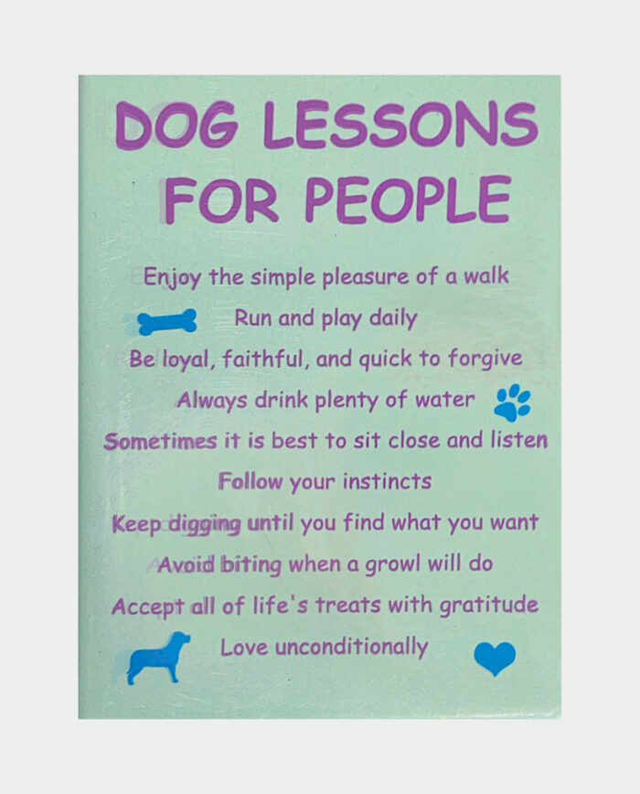 Dog Lessons for People Magnet